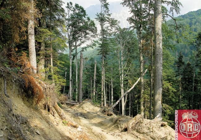 http://www.off-road-drive.ru/fi/2/pics/issue24/536/(088-093)_kavkaz_Page_1_Image_0001.jpg